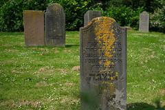 Joods begrafenplaats in Edam (Nederland) (w.vandervet) Tags: joods graf edam nederland