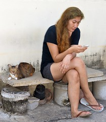 texting lady with cat (the foreign photographer - ฝรั่งถ่) Tags: texting lady cellphone cat bench khlong thanon portraits bangkhen bangkok thailand nikon d3200