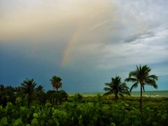 I'll take a rainbow! Happy Pride to all my Friends and their Allies who are celebrating this month and always I love you all dearly #loveislove #lovewins #loveforall #allweneedislove #happypride ❤️💙💚💛:purple_heart (Sivyaleah (Elora)) Tags: sanibel island florida vacation june 2019 rainbow tropical olympus penf storm clouds pride palm trees view lush