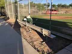 Tucson 10 (MFHarris) Tags: tucson saguaros cherryfield pecosleague arizona ballpark baseball stadium