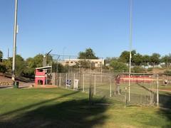 Tucson 6 (MFHarris) Tags: tucson saguaros cherryfield pecosleague arizona ballpark baseball stadium