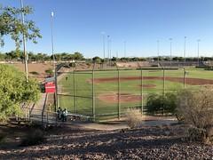 Tucson 2 (MFHarris) Tags: tucson saguaros cherryfield pecosleague arizona ballpark baseball stadium