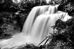 I Started Out from a Restful Sleep and Realized That Today Was a Beautiful Day! (Black & White, Cuyahoga Valley National Park) (thor_mark ) Tags: 65 anseladamslookfromcapturenx2 aurorahdr aurorahdrpro azimuth117 bedfordshale bereasandstone blackwhite brandywinecreek brandywinefalls brandywinegorgetrail brandywinegorgetrailloop camranger capturenx2edited clevelandshale cloudy colorefexpro creek cuyahogavalleynationalpark day6 exposedrock hdr imagecapturewithcamranger landscape layersofrock longexposure lookingeast lowerpeninsulaheartland midwestgreatlakesarea mostlycloudy nature nikond800e northamericaplains ohiowabasheriearea outside overcast portfolio project365 singleimagehdr travel trees triptogatewaymammothcuyahoganationalparks waterfall waterfalls ohio unitedstates
