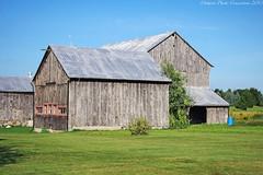 (ontario photo connection) Tags: orono barn rural eastern canada ontario