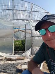 Strawberry Greenhouse Self (Bracus Triticum) Tags: strawberry greenhouse self people fukuoka 福岡県 九州 kyushu 日本 japan 飯塚市 iizukacity iizuka 筑豊 chikuhō 5月 五月 早月 gogatsu satsuki fastmonth 2018 令和元年 summer may reiwa