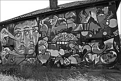 Graffiti Art  Monochrome (brianarchie65) Tags: flintongrove prestonroad stjohnsgrove easthull kingstonuponhull graffiti graffitiart graffitistreetart grass trees rubbish litter demolition geotagged brianarchie65 canoneos600d unlimitedphotos houses paint monochrome