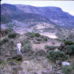 IMG_0004 Tenerife Canary Islands Mount Teide volcano Aug 1969 Geoff Spafford RIP (photographer695) Tags: geoff jean spafford rip old family photos tenerife largest spain's canary islands aug 1969 mount teide volcano