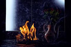 A new chapter (Davide Solurghi Photography) Tags: davidesolurghiphotography davidesolurghi books libri vaso jar flower fleurs fiori stilllife naturemorte naturamorta conceptual concept concetto concettuale fumo smoke flame fiamma chapter