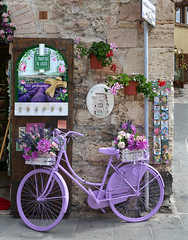 Umbria: Assisi, purple bicycle (Henk Binnendijk) Tags: italy italia italië umbria umbrië umbrie bicycle bike fiets fahrrad bicyclette vélo iprofumidiassisi assisi