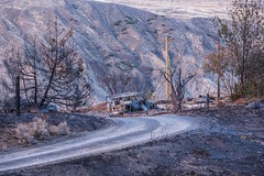In the Aftermath of Wildfire - Ashcroft Fire (MIKOFOX ⌘) Tags: july grassland ashcroftfire wildfire learnfromexif canada provia trees xt2 fire forestfire mikofox wreck summer britishcolumbia burned fujifilmxt2 showyourexif smoke landscape xf18135mmf3556rlmoiswr