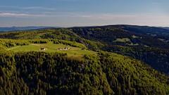 Hohneck - Juin 19 - 08 (sebwagner837_55) Tags: hohneck lorraine alsace vosges hautrhin haut rhin grand est grandest france trois fours tanet gazon faing donon
