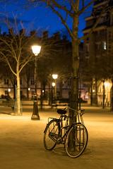 Paris (Yann OG) Tags: paris parisien parisian france français french placedauphine îledelacité vélo bicyclette bike bluehour heurebleue 50mm f18 réverbère lampadaire 75001