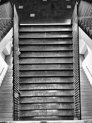Left, right, or through the middle? (ANBerlin) Tags: einfarbig monochrome biancoenero noiretblanc schwarzweis blackwhite sw bw ausergewöhnlich extraordinary struktur structure abstrakt abstract modern bauwerk gebäude building architektur architecture geländer handrail stufen treppenhaus staircase stairwell treppe stairs technischeuniversität technicaluniversity deutschland germany strasedes17juni berlin charlottenburg tuberlin anb030 shotoniphone iphotography iphonography 8plus iphone8 iphone apple