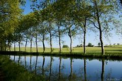 IMGP2218 (Dnl75) Tags: canal canaldumidi france reflection reflexion reflet water