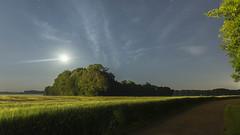 Promenade sous la Lune (Mare Crisium) Tags: campagne country campaign nature lune moon trees arbres champ corn blé field nuages clouds sky ciel etoile star chemin path route road bleu vert blue green groupenuagesetciel