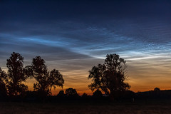 Noctilucent Clouds Phenomena (NLC) in Northern Ireland (Gareth Wray - 13 Million Views, Thank You) Tags: water summer northern ireland trees phenomena atmosphere twilight show display light ballymagorry clouds noctilucent nlc nlcs street ni uk scenic landscape county tyrone gareth wray photography strabane nikon d810 nikkor wide lens sky tourist tourism mourne river site visit country side grass british irish colourful derry council bank nature flowing photographer town lifford day vacation holiday europe 2019 70200mm