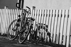 19-06-29 bw zaun rad strukt _dsc2307 (ulrich kracke (many thanks for more than 1 Mill vi) Tags: fahrrad kontrast nah schatten stockumerstr struktur zaun