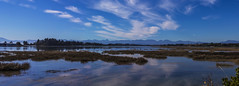 Motueka Reflections (CraDorPhoto) Tags: canon6d landscape panorama water reflection sky clouds blue nature outside outdoors newzealand