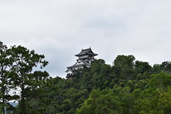 InuyamaJo0048 (lorindadixon) Tags: aichi nagoya japan nature clouds cloudy city studyabroad personal nufs sky travel ysu castle inuyama inuyamajo samurai museum culture history