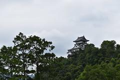 InuyamaJo0047 (lorindadixon) Tags: aichi nagoya japan nature clouds cloudy city studyabroad personal nufs sky travel ysu castle inuyama inuyamajo samurai museum culture history