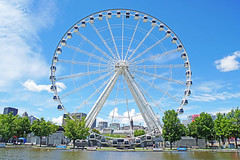 DSC00347 - Montreal Wheel (archer10 (Dennis)) Tags: montreal sony a6300 ilce6300 18200mm 1650mm mirrorless free freepicture archer10 dennis jarvis dennisgjarvis dennisjarvis iamcanadian canada oldmontreal oldportmontreal quebec lagranderouedemontréal montrealwheel