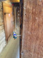 Witch (svennevenn) Tags: gatekunst bergen streetart gatekunstbergen streetartbergen wtches hekser tinybergen miniatyrfigurer miniaturefigures dypedal