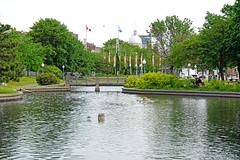 DSC00088 - Promenade de Quais (archer10 (Dennis)) Tags: canada chinatown montreal sony free oldmontreal dennis jarvis iamcanadian 18200mm mirrorless freepicture 1650mm dennisjarvis a6300 archer10 dennisgjarvis ilce6300 oldportmontreal park bridge lake promenadedequais quebec