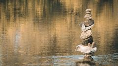 Stability (Jean-Luc Peluchon) Tags: fz1000 balance équilibre eau water river rivière périgord aquitaine france