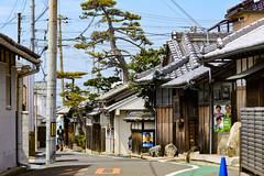 Pine House (m-louis) Tags: 2016 70300mm nikon1 cone house japan kaizuka mirrorj5 osaka pine politics poster slope street tree 大阪 家 日本 松 貝塚 電柱