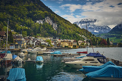 Coming Home (cszar) Tags: sony alpha7ii zeiss loxia prime manual captureone10 switzerland schweiz gersau boat harbor mountain landscape loxia250 ilce7m2
