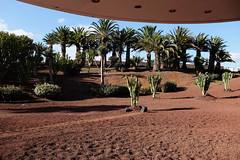 Enterprise has landed (RadarO´Reilly) Tags: spain lanzarote cacti sciencefiction dessert enterprise