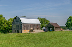 Outbuildings — Green Township, Ross County, Ohio (Pythaglio) Tags: chillicothe ohio unitedstatesofamerica outbuilding barn threebay bank gambrel roof metal vacant bracedframe corncrib agriculture rural trees rosscounty greentownship