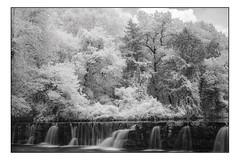 Natural Dam - IR (Terry L. Olsen) Tags: naturaldam crawfordcounty ozarknationalforest arkansas infrared water trees waterfall captureone12 nikcolorefexpro4 blackandwhite
