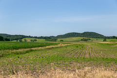Landscape — Colerain Township, Ross County, Ohio (Pythaglio) Tags: ohio unitedstatesofamerica kingston trees foothills mountains field forest landscape corn scenic hills pasture fields crops coleraintownship rolling pleasant topography rosscounty hallsville