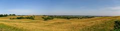 Landscape — Colerain Township, Ross County, Ohio (Pythaglio) Tags: trees ohio grass landscape view unitedstatesofamerica scenic hills valley land adelphi farms coleraintownship rolling pleasant topography laurelville rosscounty