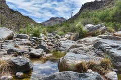 Bear Canyon hike to 7 Falls (wanderess78) Tags: arizona tucson canyon nature outdoors explore hiking