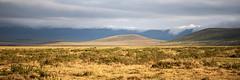 Early morning in the Ngorongoro Crater (Markus Hill) Tags: arusha tansania ngorongoro crater morning canon travel 2019 africa afrika tanzania ostafrika eastafrica nature landscape light cloud