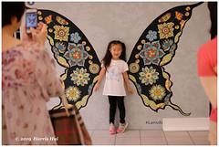 The Butterfly Kid - Lansdowne XT7206e (Harris Hui (in search of light)) Tags: harrishui fujixt1 digitalmirrorlesscamera fuji fujifilm vancouver richmond bc canada vancouverdslrshooter mirrorless fujixambassador xt1 fujixcamera fujixseries fujix fujixf35mmf2 fujiprimelens fixedlens standardlens street streetphotography candid streetcandid butterfly butterflykid kid wings metamorphosis metaphor
