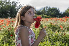 Isabella (Duncan Lawler) Tags: admiring arundel beautiful beautifuleyes conceptualportrait childmodel duncanlawler england female femalemodel field girl green isabella kid landscape model nikon750 outdoor poppy poppyfield portrait posed uk unitedkingdom red u