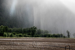 0P6A6402 Rainstorm (edhendricks27) Tags: rain rainstorm weather canon