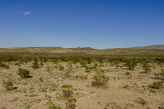 Dagger Flat II (rschnaible) Tags: texas usa desert big bend national park outdoors landscape dagger flats flat
