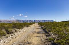 Dagger Flats (rschnaible) Tags: texas usa desert big bend national park outdoors landscape dagger flats