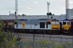 60013 & 66048 - Toton TMD (Lukas Gwynne) Tags: class 60 66 08 08653 60013 66048 james the engine stobart ews robert boyle toton tmd noahs ark railtour db dbs dbc schenker cargo
