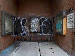 (geowelch) Tags: toronto chinatown alcove deadend culdesac signage graffiti brickwork confined publicspace box panasoniclumixgx7 panasoniclumixgvario1232mm