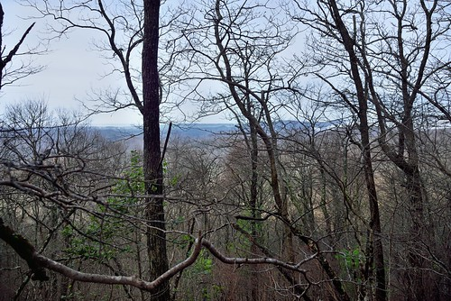 Through the Trees to Appalachian Hills and Mountains Beyond