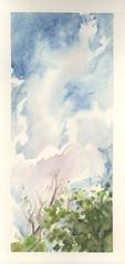 Sky above treetops (Marcia Milner-Brage) Tags: urbanlandscape sky skyscape verticallandscape summer trees cedarfallsiowa watercolor 30x30directwatercolor2019 marciamilnerbrage