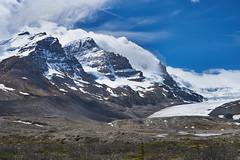 Athabaska glacier 2016_743 (Archie Richardson) Tags: columbiaicefield alberta mtathabasca athabascaglacier