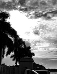 Early Rainclouds (LarryJay99 ) Tags: palms urbanpalms sky clouds westpalmbeach florida black blackandwhite composition shadows fence urbansky