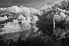 glenaladale-2772-ps-w (pw-pix) Tags: gorge mitchellrivergorge rocky hilly steep terrain trees water river hills sky clouds sunny rock rocks bushes bush plants weir wall damaged broken destroyed adaptedlens nikon142428afs nikkor1424mm128ged nikkor142428 nikon142428 bw blackandwhite monochrome sonya7 irconvertedsonya7 850nminfrared ir infrared mitchellriverweir glenaladaleweir mitchellrivernationalpark mitchellriver belowstonycreekcreek ruinsoftheweir glenaladale eastgippsland victoria australia peterwilliams pwpix wwwpwpixstudio pwpixstudio