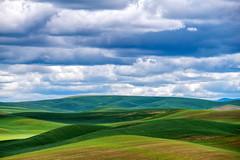 Rolling hills (jeff's pixels) Tags: hill landscape washington pnw pacificnorthwest palouse clouds nikon d850 nature beauty